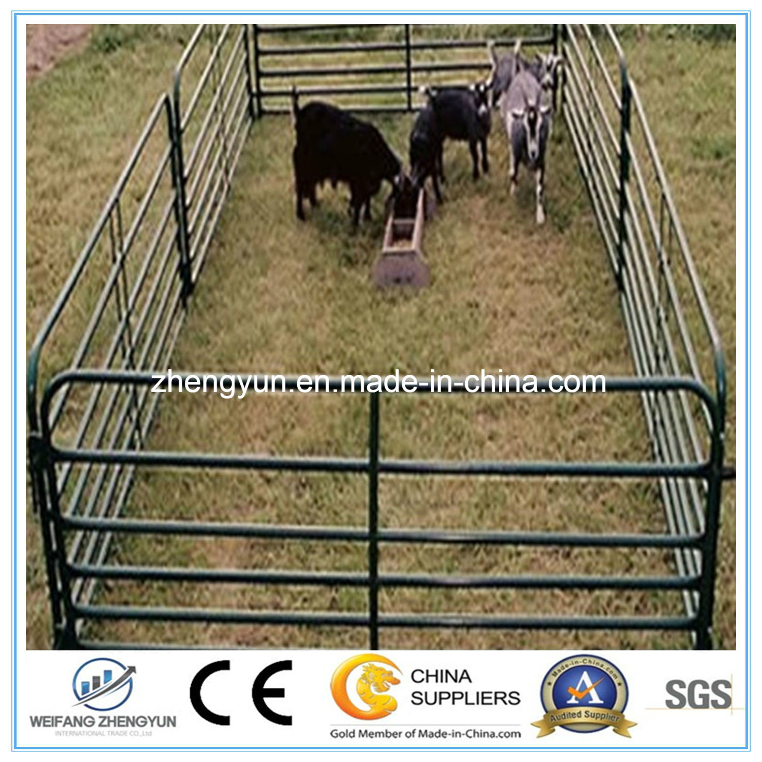 Cheap Sheep Fence/ Fence Panel with High Strength