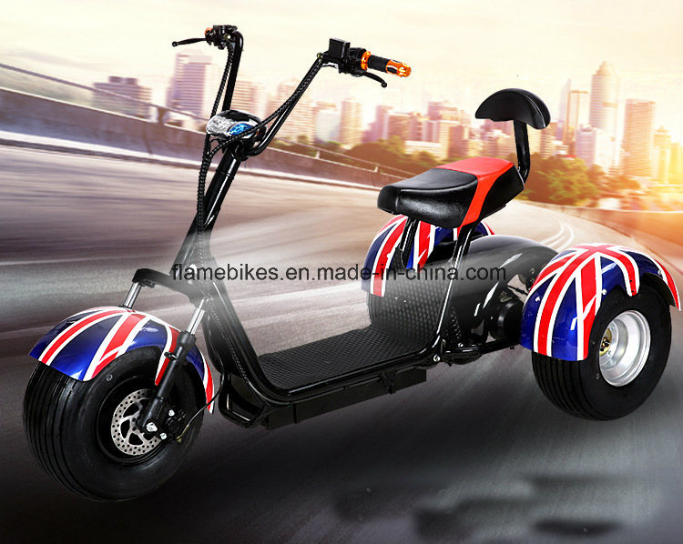 3 Wheel Electric Motorcycle with 1000W 60V/20ah