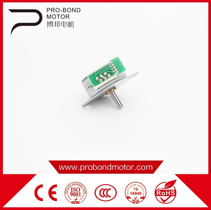 Permenent Magnetic Stepper Motor Wholesale 25by