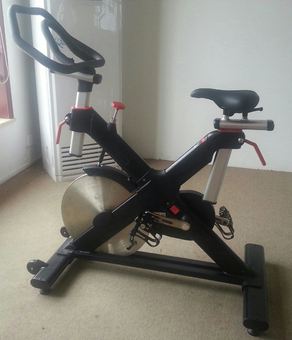 2016 Newest Hoist Lemond Spin Bike (SK-6516A)