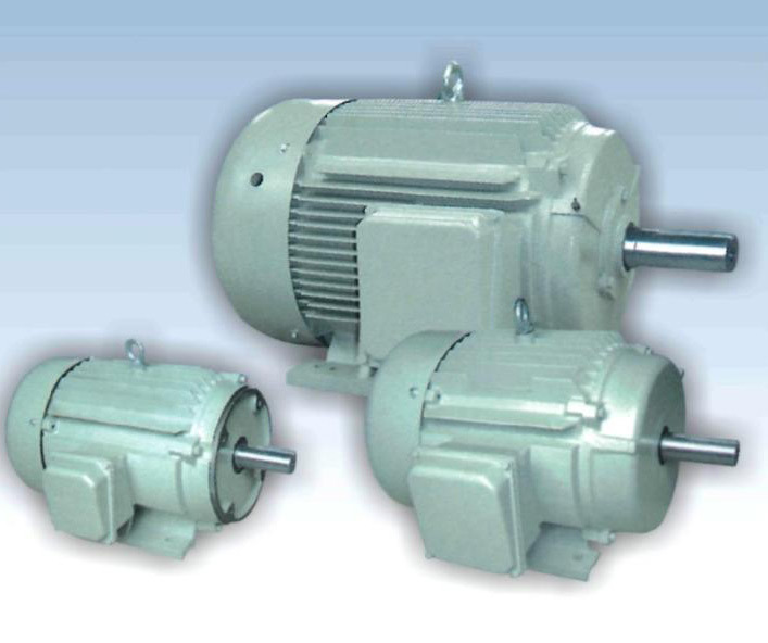 Shanghai fortune electric co ltd High efficiency motors