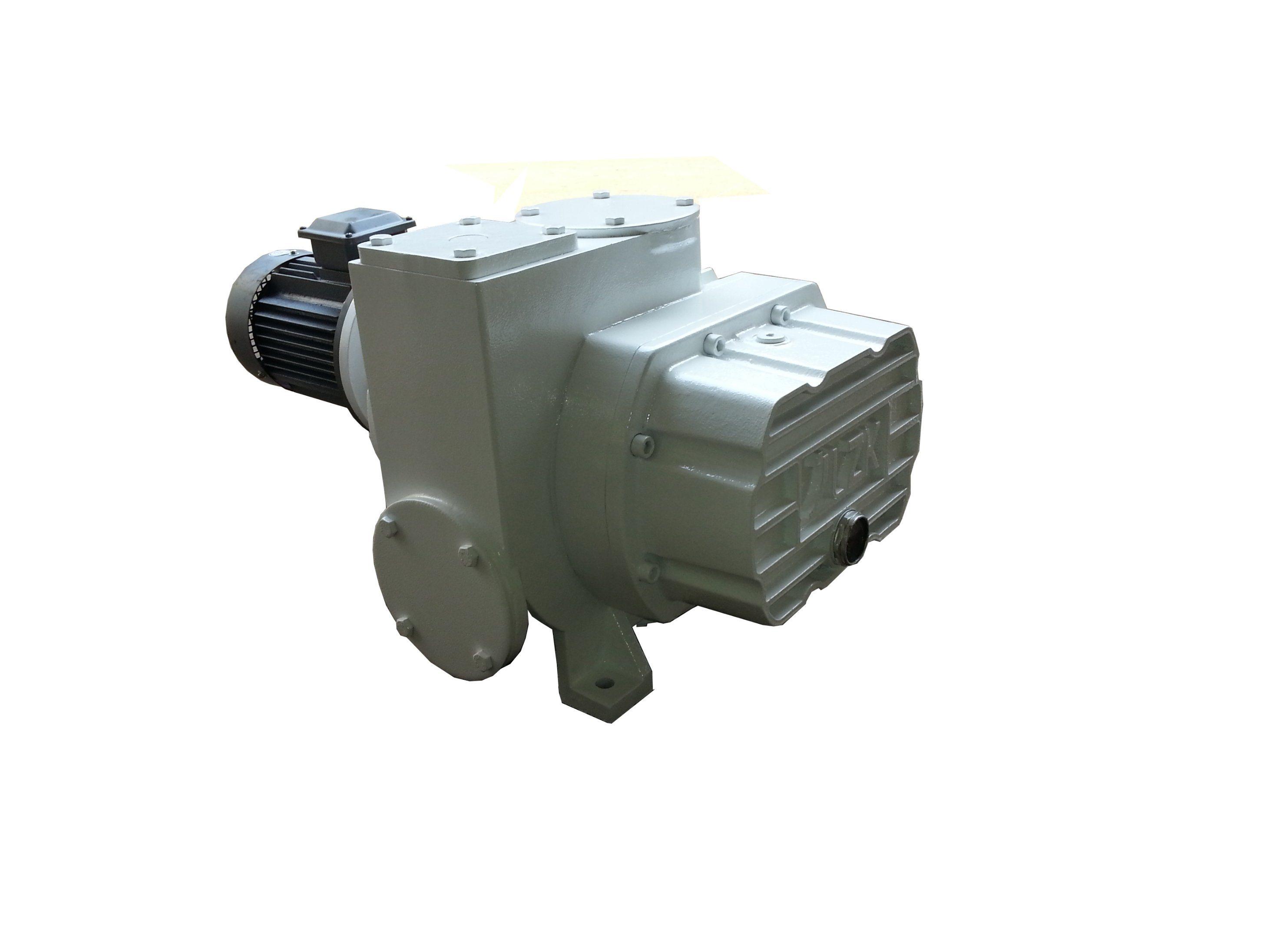 Roots Vacuum Pump