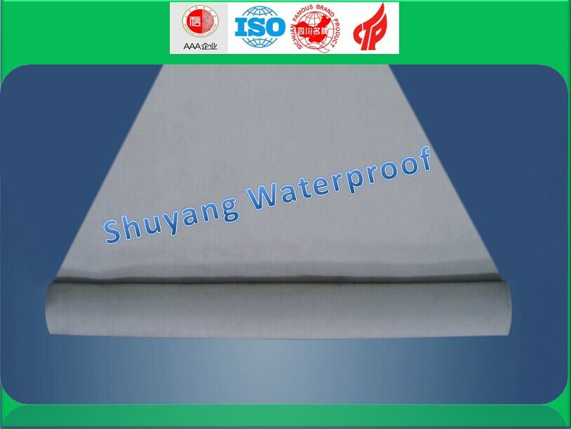 Railway Tunnel Special Waterproof Plate