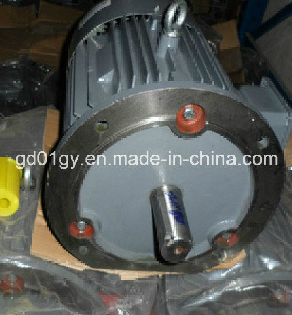 High Efficiency 3 Phase AC Electrical Motor