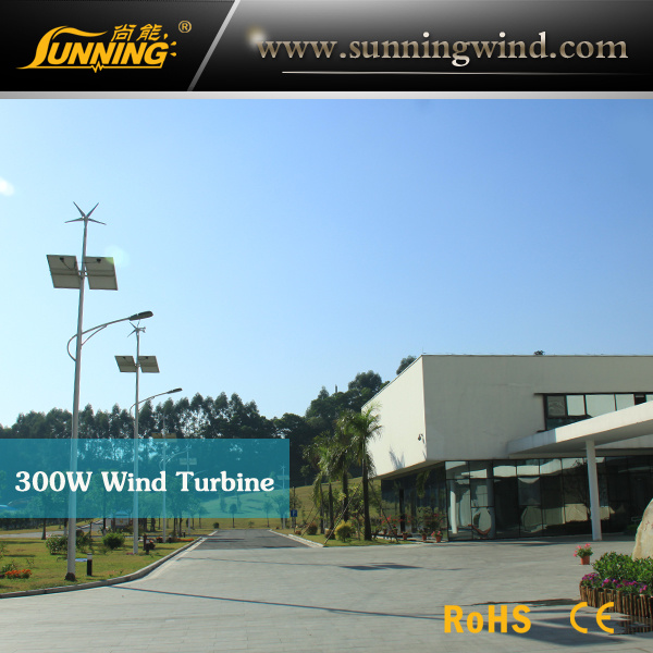 Wind Solar Hybrid Power Supply Street Light System / (LED Lighting)