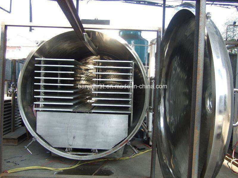 Vacuum Freeze Dryer for Fruit and Vegetable