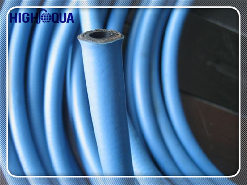 Blue Color Pressure Washer Hose