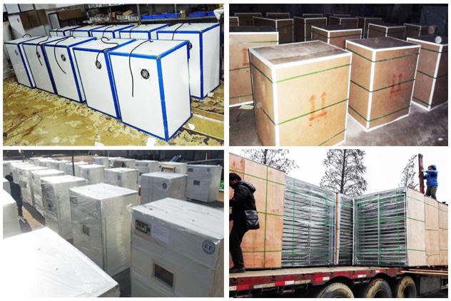 Top Sale Holding 1000 Eggs Automatic Egg Incubator China Made