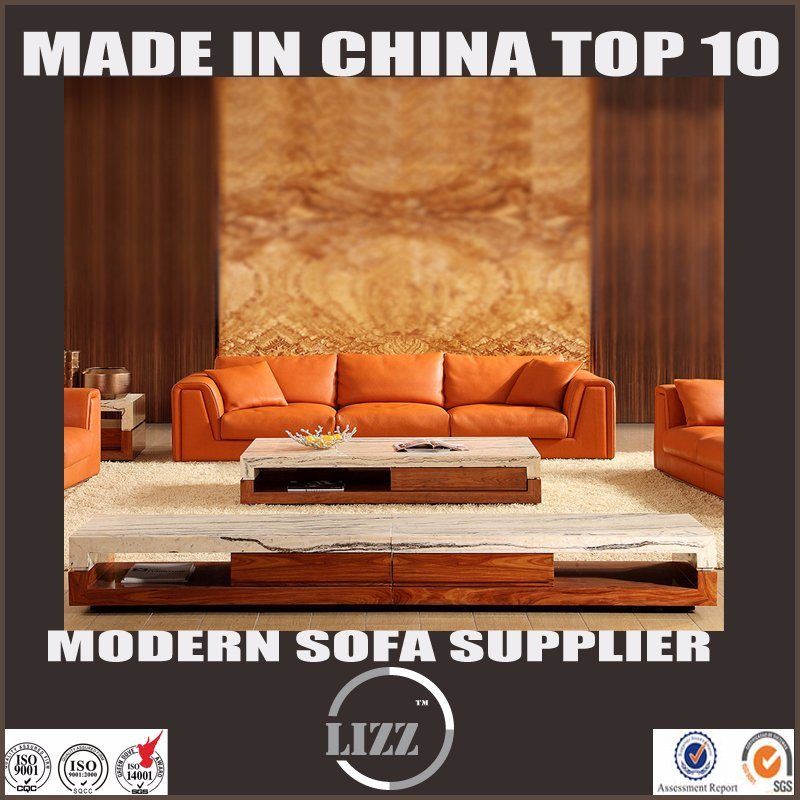 Living Room Furniture Which Best Sale in Australia Feather Leather Sofa