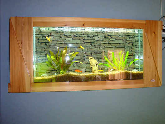 sports illustrated swimsuit picture frame fish tank