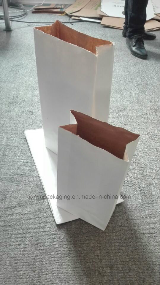 Wood Charcoal Kraft Paper Bag BBQ Charcoal Packaging Paper Bag