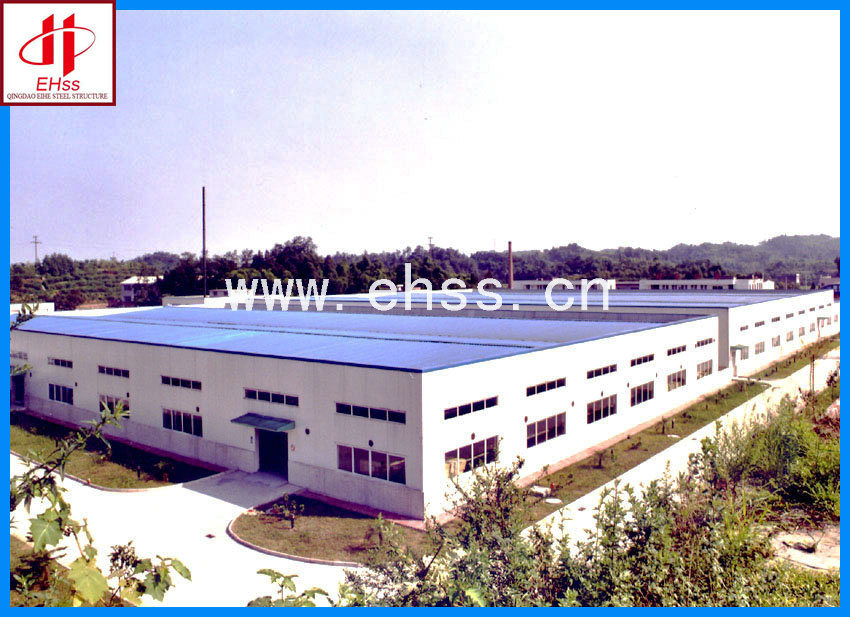 Professinoal Steel Structure Building (EHSS003)