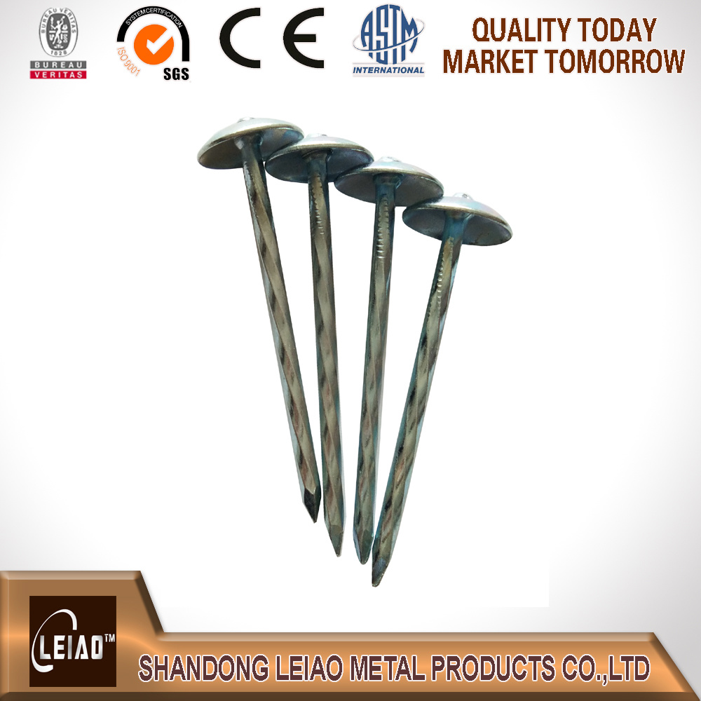 Best Quality Roofing Nail
