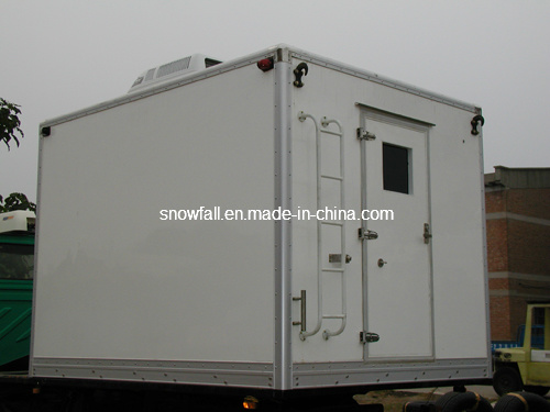 Professional Van/Cargo Box/Truck Body