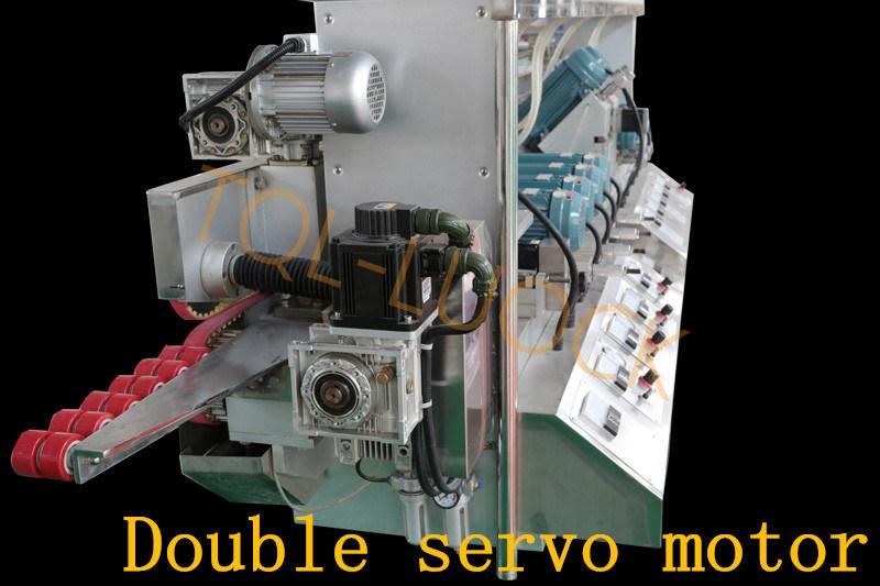 Glass Straight Line Double Edging Production Machine Line-L