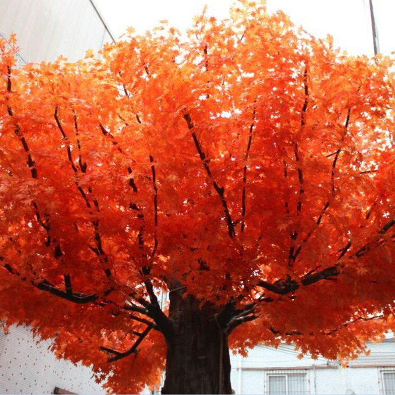 Dongguan Wholesale Fiberglass Real Trunk Evergreen Fake Artificial Maple Tree