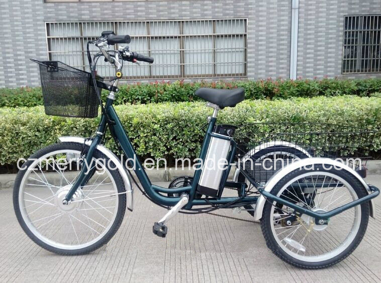 36V 250W Big Wheel Electric Tricycle Trike for Sale
