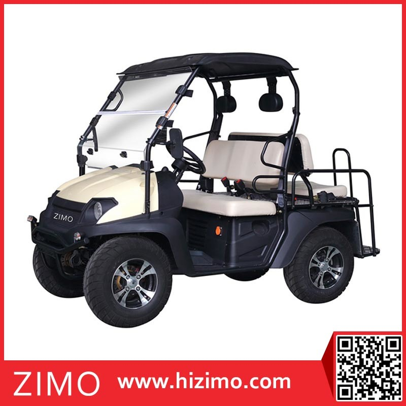 2017 New 4kw Adult Electric ATV