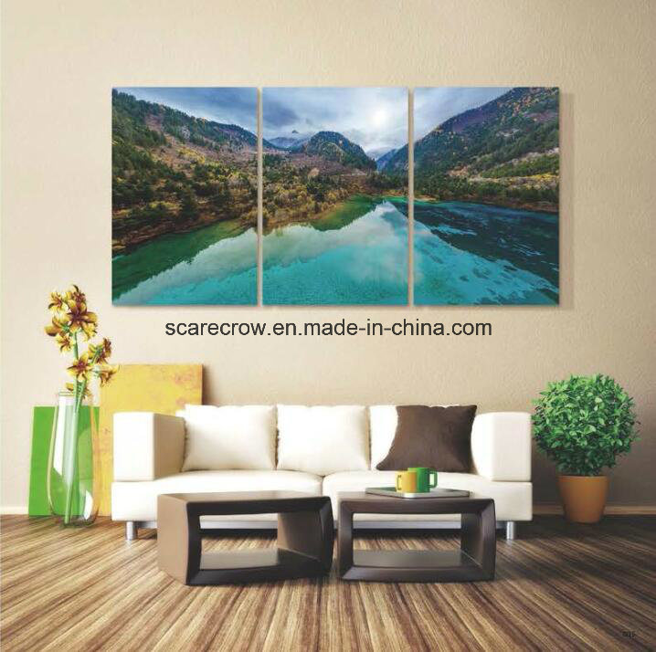 Wall Art Painting Decoration -- The Hot Selling Acrylic Painting