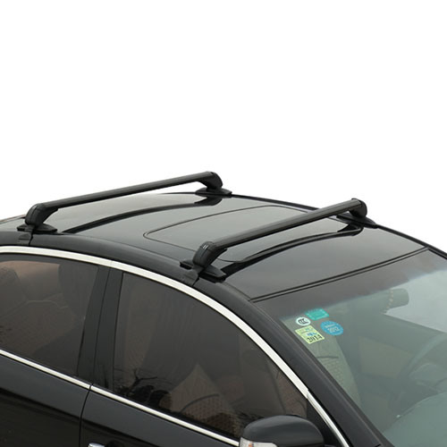 Universal Car Roof Rack Bar with High Quality (Bt RF303)