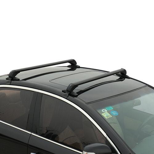 Universal Car Roof Rack Bar with High Quality (Bt RF303)