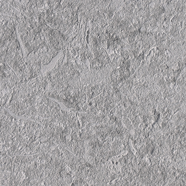Natural Italian Grey Shell Stone Limestone Wall Tile for Exterior