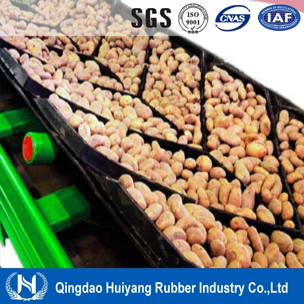 China Supplier Ep or Nn Patterned Chevron Conveyor Belt
