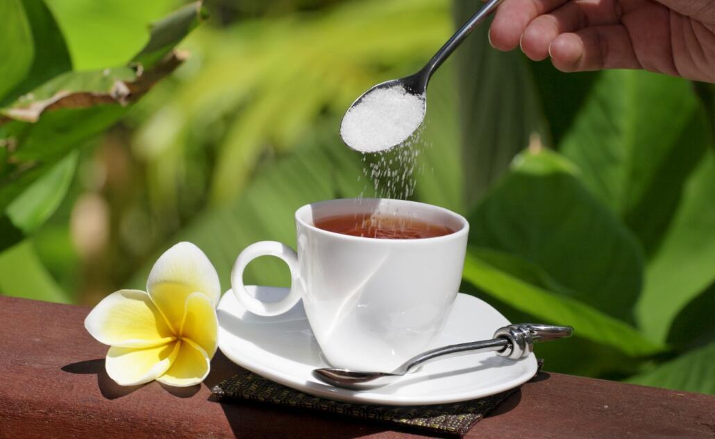 Stevia Rebaudiana & Stevia Leaf as Flavoring Additives to Coffee, Food and Drink