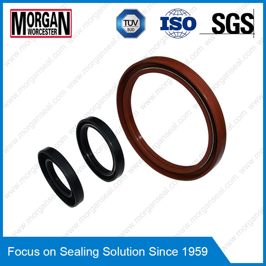 OEM/ODM Custom Rubber Ring as/Tc Type Oil Seal