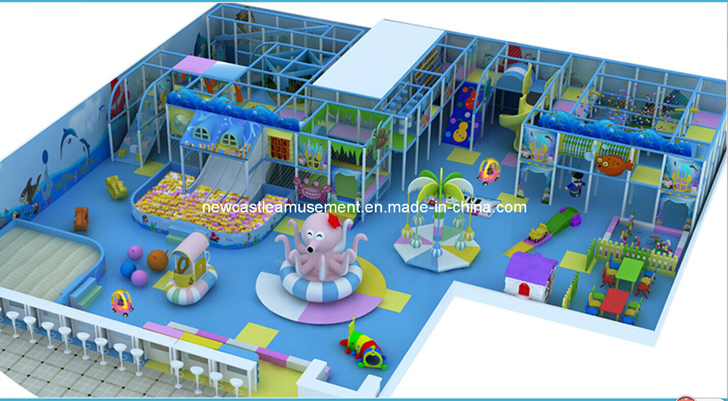 High Quality Kids Indoor Playground Equipment (NC-IP208)