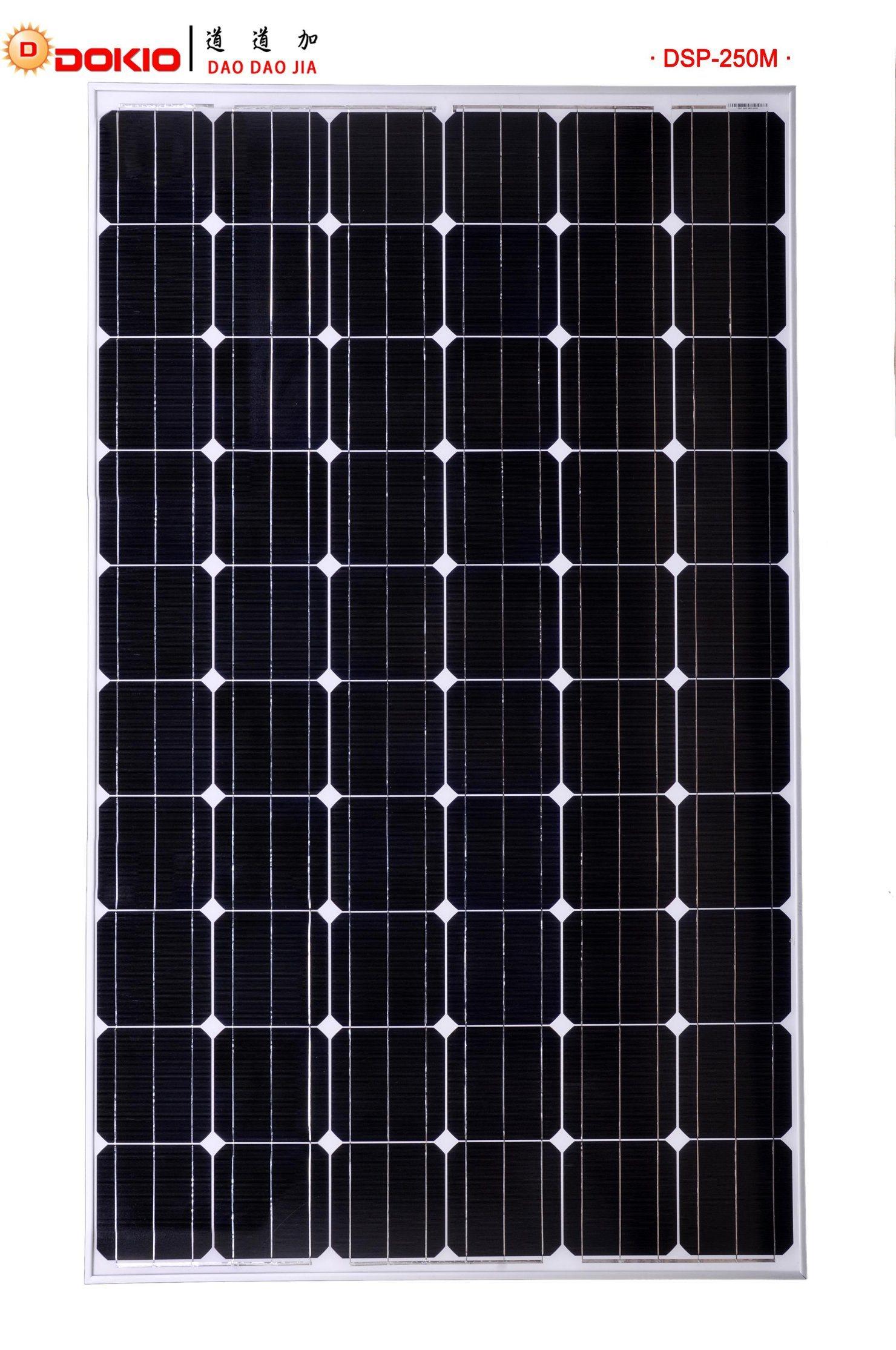 Mono Crystalline Solar Module (DSP250M-60)