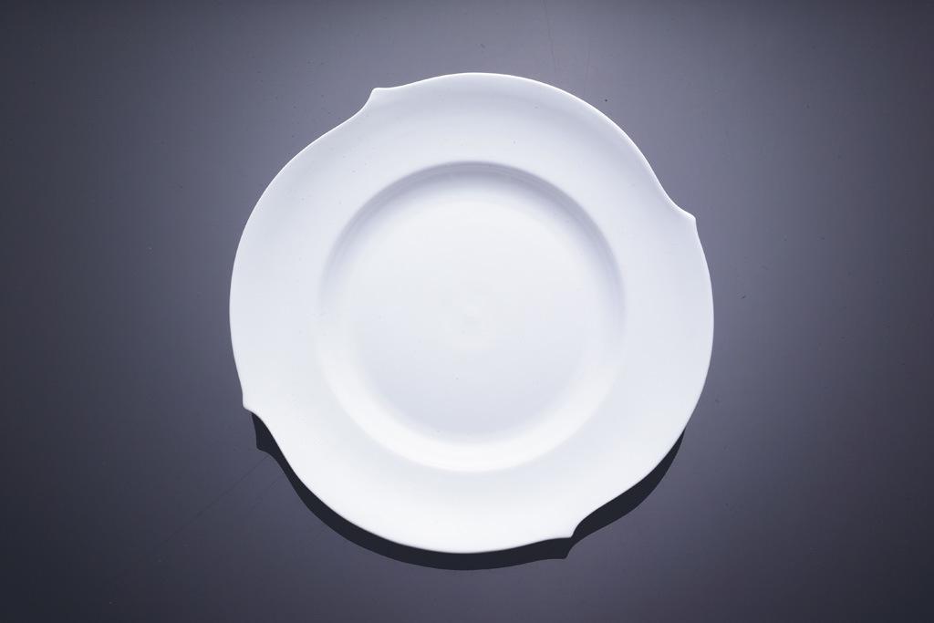 bone ceramic plate 2 china plates porcelain plate