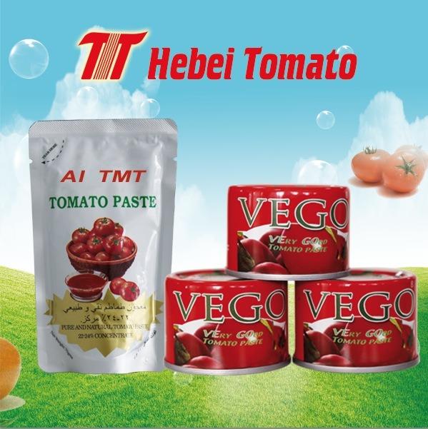 Tomato Paste Tomato Ketchup Tomato Sauce