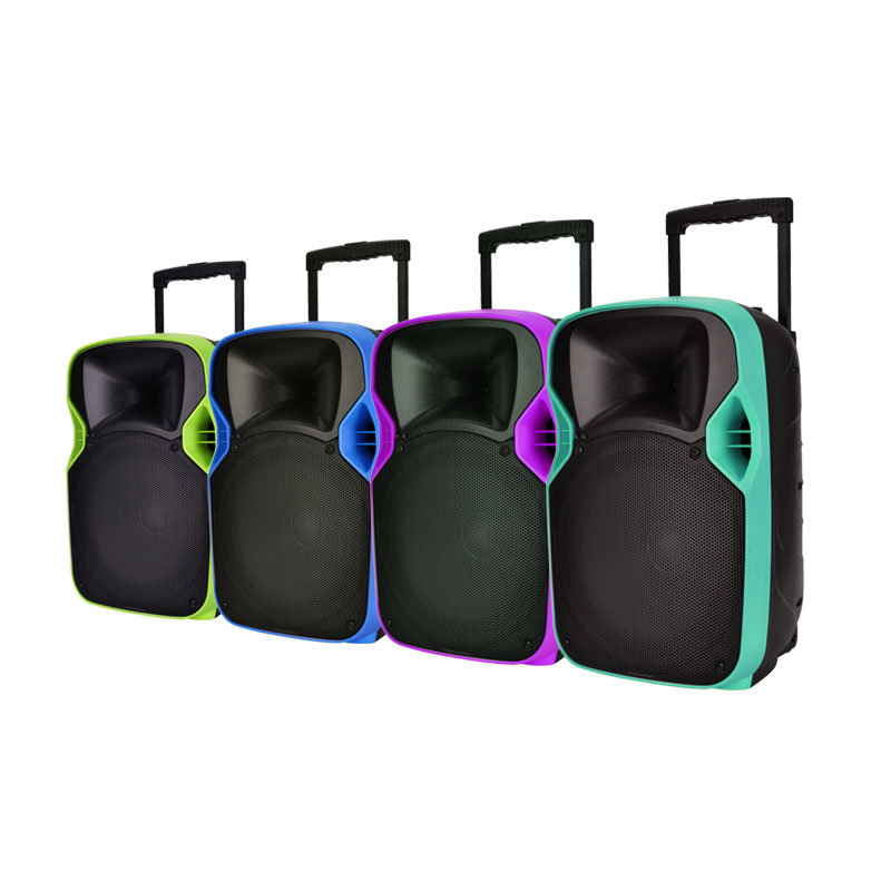Good Quality 12 Inches PA System Loudspeaker with LED Projector