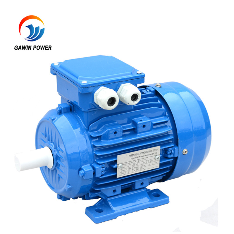 Ms Series Aluminum Housing Three Phase Induction Motor