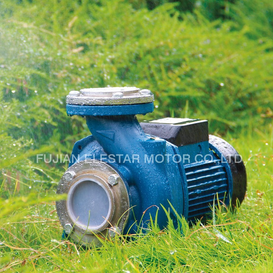 Cast Iron Household Centrifugall Pump with Ce