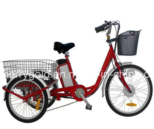 36V 250W Big Wheel Electric Tricycle Trike for Sale