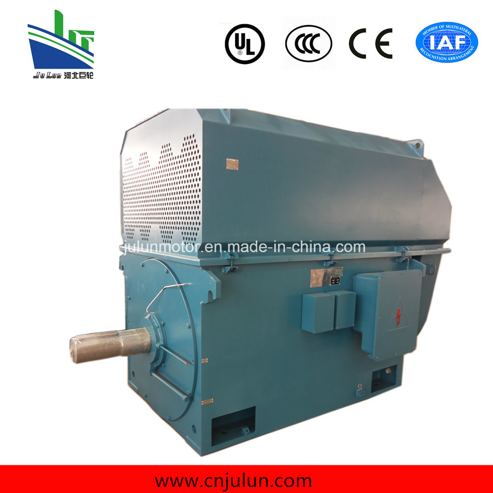High-Voltage Squirrel Cage 3-Phase Induction Asynchronous Electric Motor