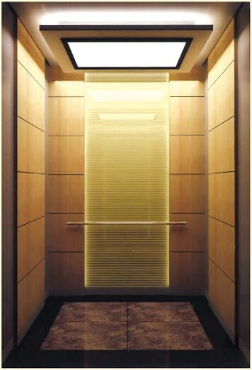 Glass Hairline Stainless Steel Passenger Elevator (ALD-KC027)