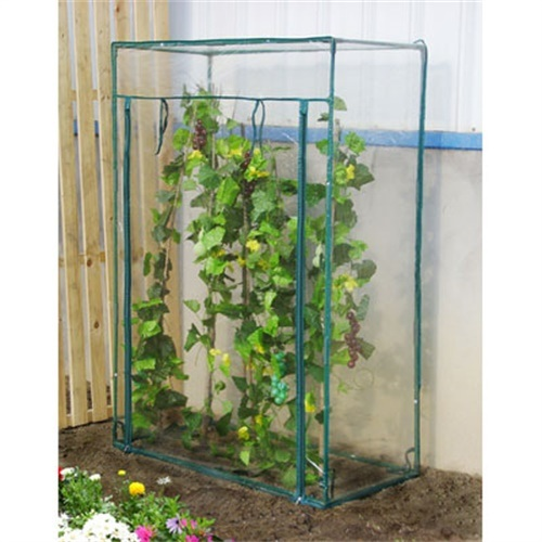 Tomato Greenhouse with PVC Cover