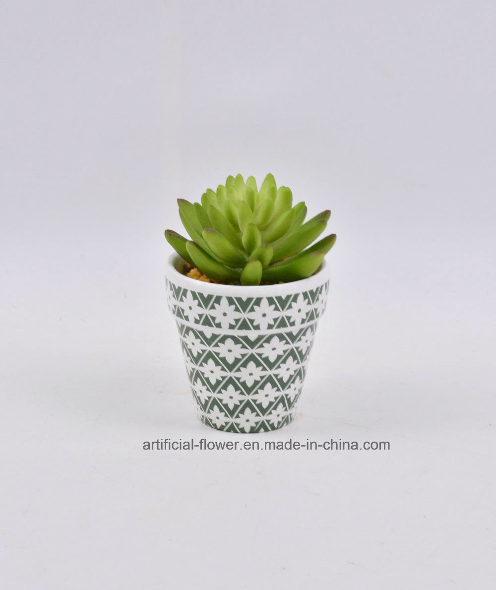 Kinds of Artificial Succulent Plants with Classical Potted for Your Home/Office Decoration