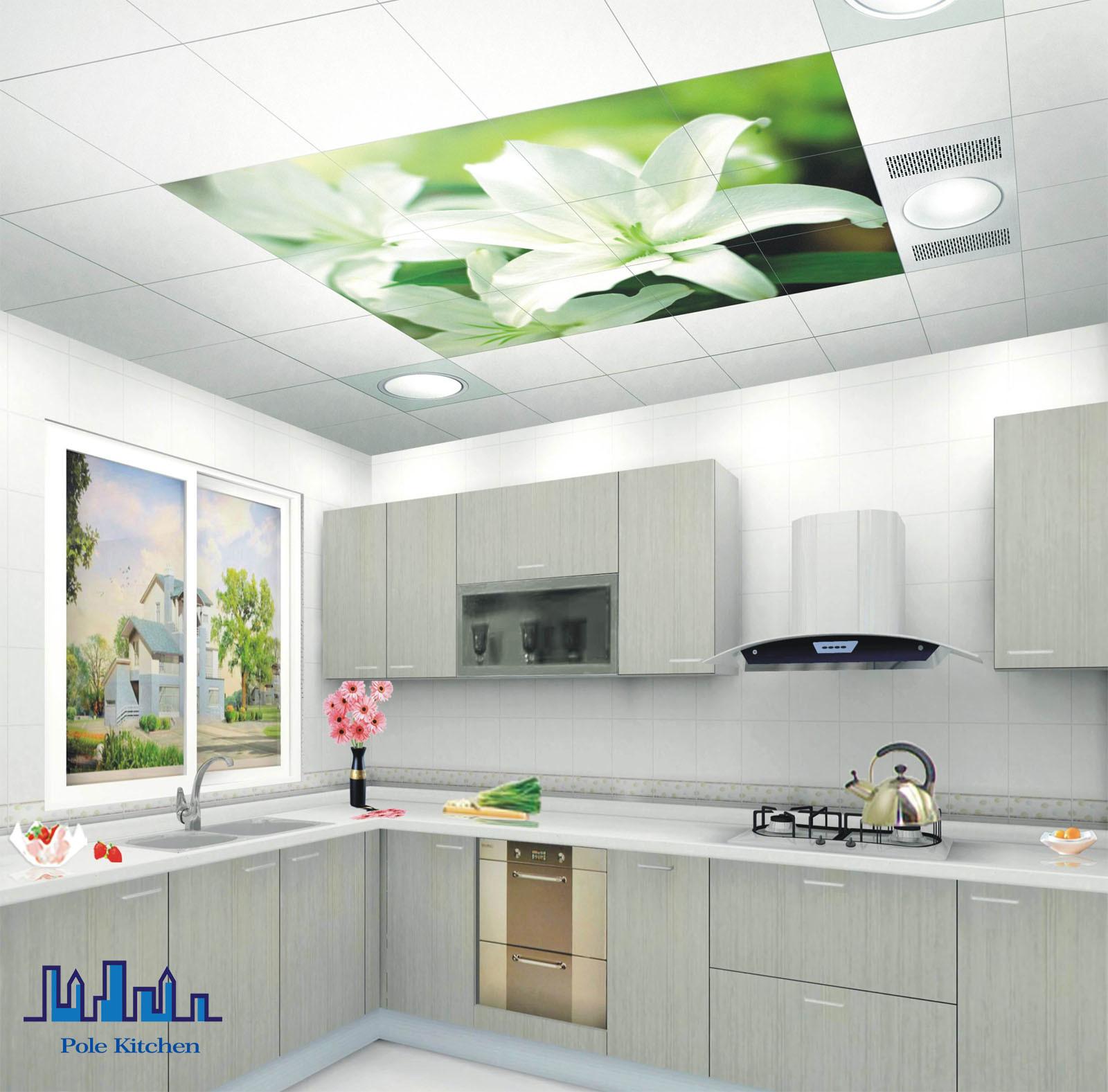 Module de cuisine blanc de peinture de pvc de polonais photo sur ...
