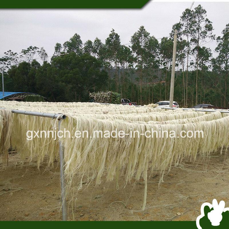 da classe do sisal de fibra ug da fibra do cnhamo uda classe do sisal de fibra ug da fibra do cnhamo fornecido por nanning jie cheng hang co