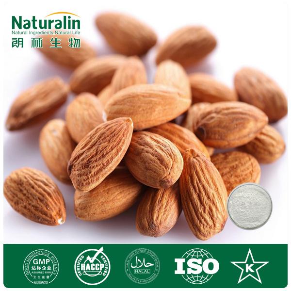 Extrait amer de noyau d 39 abricot de certificat de gmp extrait d 39 abricot extrait amer de noyau - Planter noyau d abricot ...