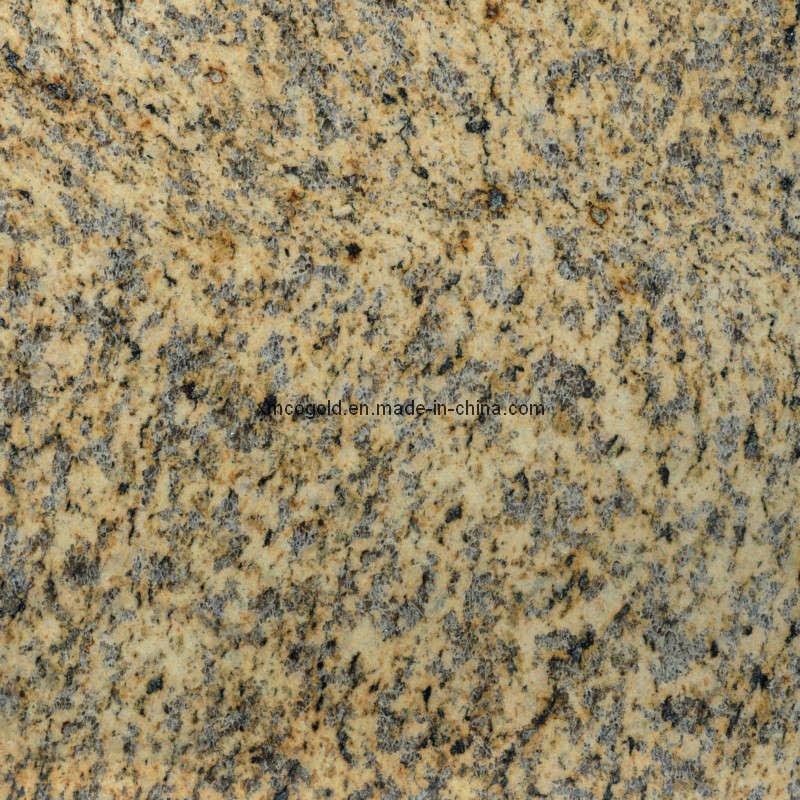 Tigre amarillo del granito tigre amarillo del granito for Proveedores de granito
