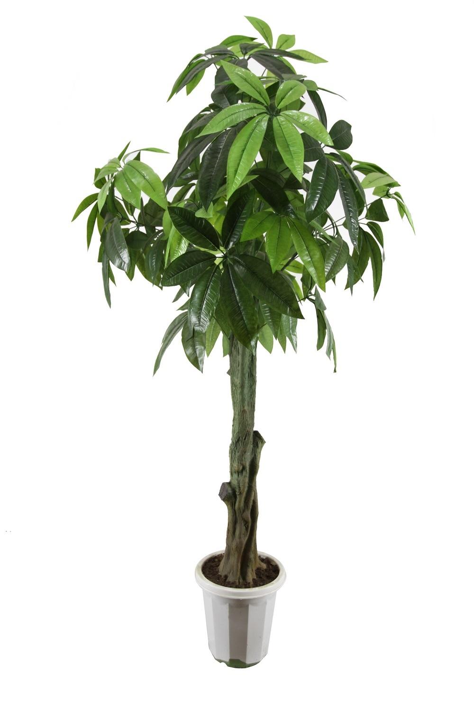 Rbol de artficial planta artificial rbol de la fortuna - Planta artificial ...