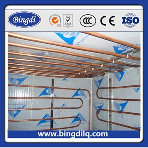 Construction de chambre froide de panneaux de 100mm pour for Panneau de chambre froide