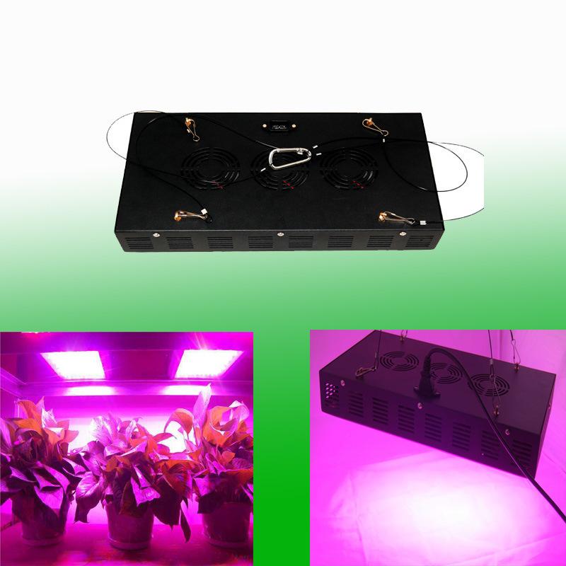 Spectrums completa nuevo 300w led crece la luz para el for Leds para cultivo interior