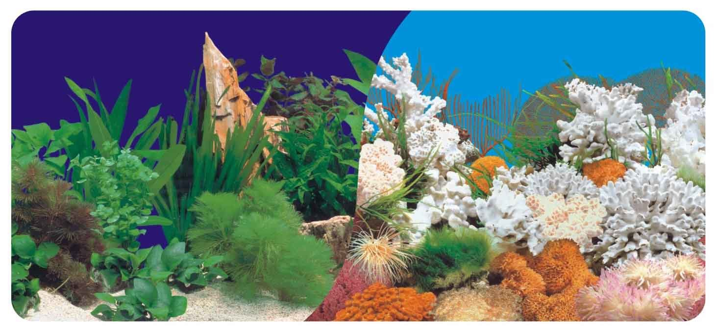 Alle produkte zur verf gung gestellt vonwuhan nature aquarium products co ltd - Aquarium hintergrund ausdrucken ...