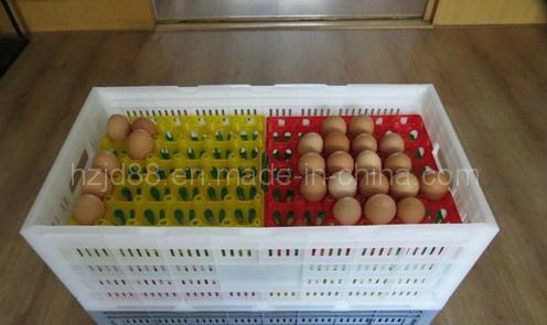 Bandeja pl stica del huevo de la alta calidad para la for Bandejas para huevos